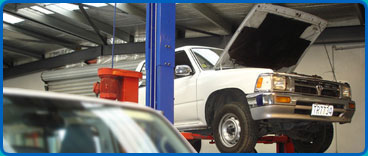 Synergy Auto Shop has revolutionised the way the New Zealand automotive industry does business